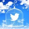 SNSで身をまもる?災害時にTwitterの「#救助」という言葉