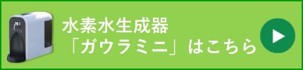 gaurakochira2