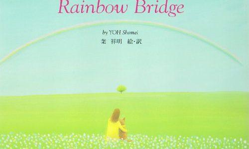 愛犬を失って苦しい時に「虹の橋」の物語を思い出したい