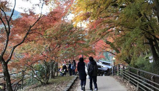 【食べ歩きが最高】香嵐渓は紅葉と美味いものが絶品!その魅力を写真つきで徹底的に紹介します